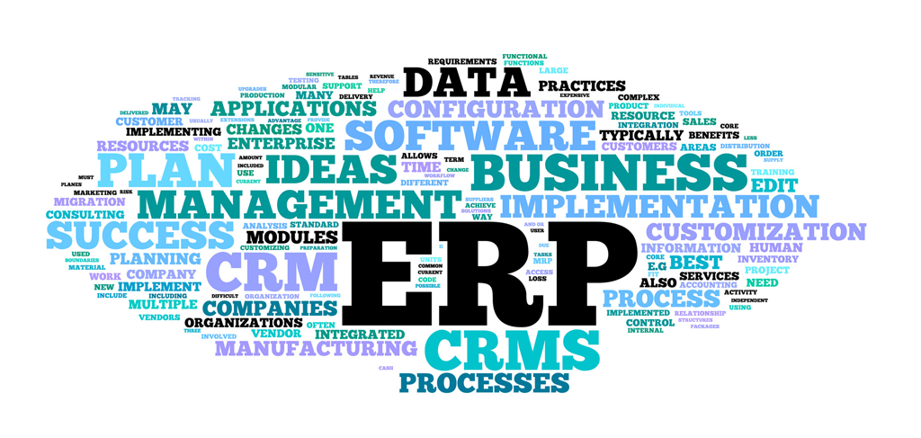 Ribe Mediehus - ERP, Moduler, Processer, CRM, SOFTWARE, DATA, Success, Tilpasning, Skræddersyet