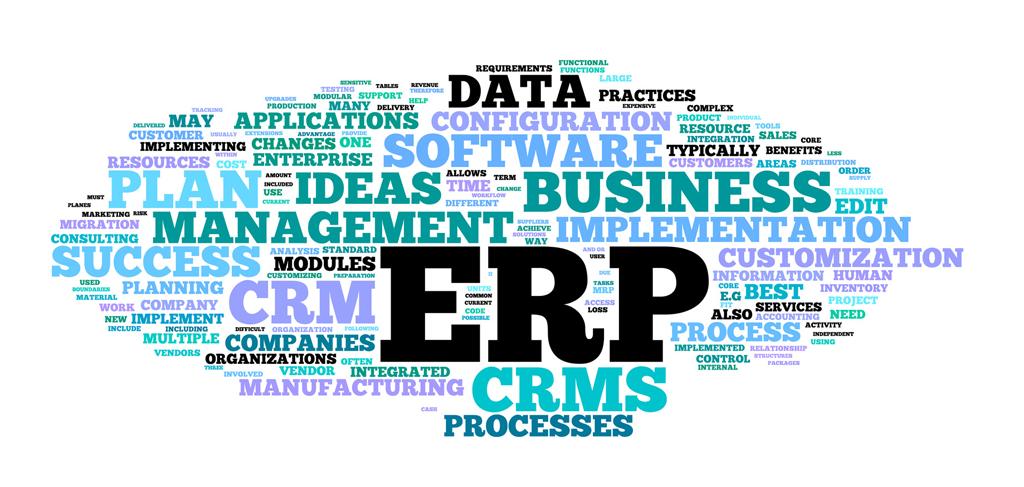 Ribe Mediehus - ERP, Moduler, Processer, CRM, SOFTWARE, DATA, Success, Tilpasning, Skræddersyet